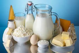 Los lacteos: alimento o veneno